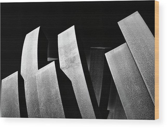 Art Wood Print featuring the photograph Contrasts by Jonathan Garrett
