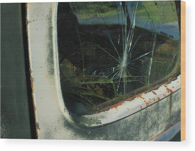 Wood Print featuring the photograph Cracked by Sonya Anthony
