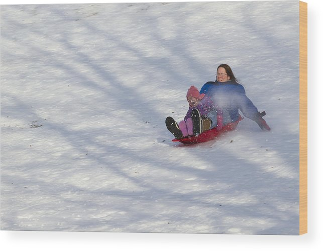 Mother Wood Print featuring the photograph Dawn Flora Sledding 12812c by John Brueske
