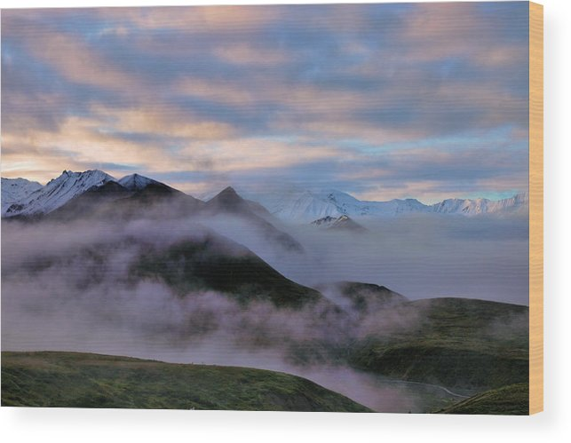 Denali National Park Wood Print featuring the photograph Denali Dawn by Rick Berk