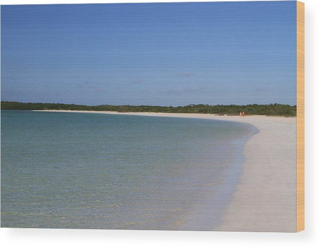 Beach Wood Print featuring the photograph Deserted Cuban Beach by Gord Patterson