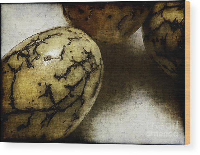 Dragon Wood Print featuring the photograph Dragon Eggs by Judi Bagwell