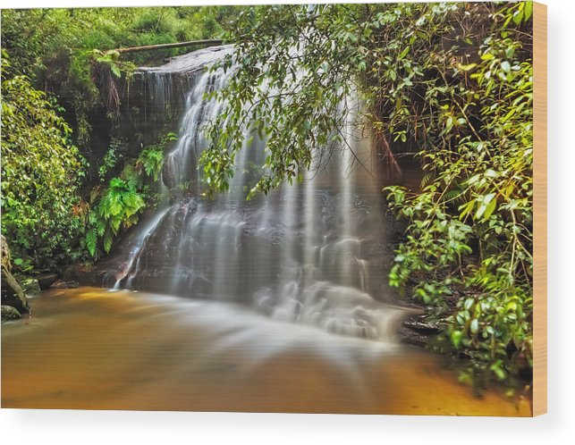 Waterfall Wood Print featuring the photograph Eden's Garden by Mark Lucey
