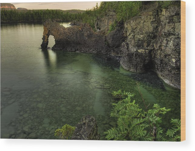 Bay Wood Print featuring the photograph Elephant Rests In The Green Lagoon  by Jakub Sisak