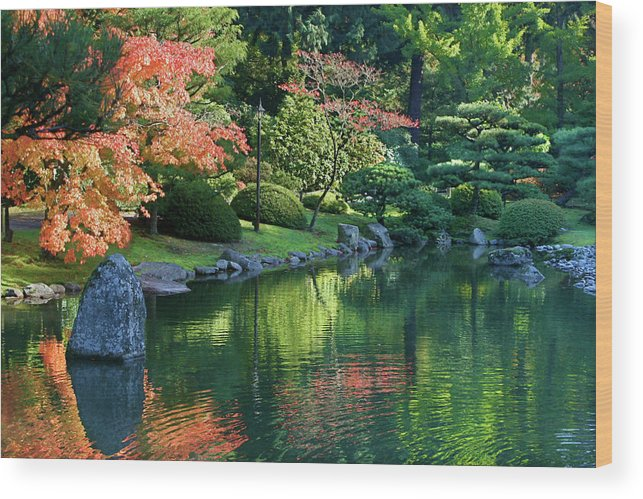Botanical Wood Print featuring the photograph Fall Reflections Japanese Gardens by Vicki Hone Smith