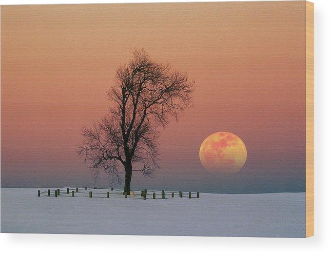 Full Moon Wood Print featuring the photograph Full Moon Rising Near Graveyard by Larry Landolfi