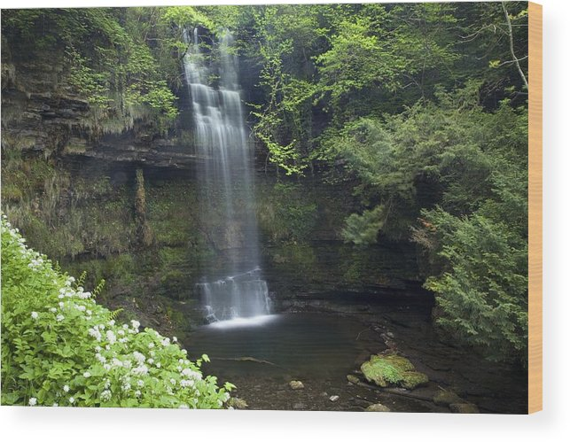 Outdoors Wood Print featuring the photograph Glencar Waterfall, Co Sligo, Ireland by Gareth McCormack