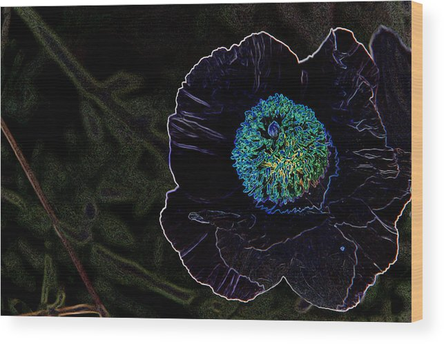 Flower Wood Print featuring the photograph Glow by Lucia Velicu