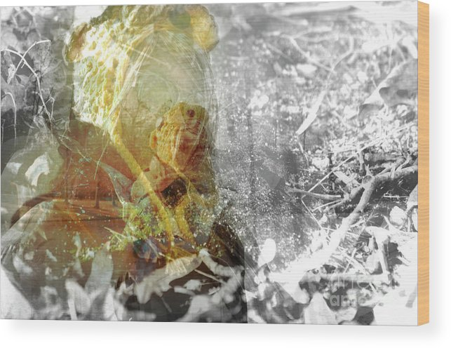 Glory Wood Print featuring the photograph Golden Moment by Affini Woodley
