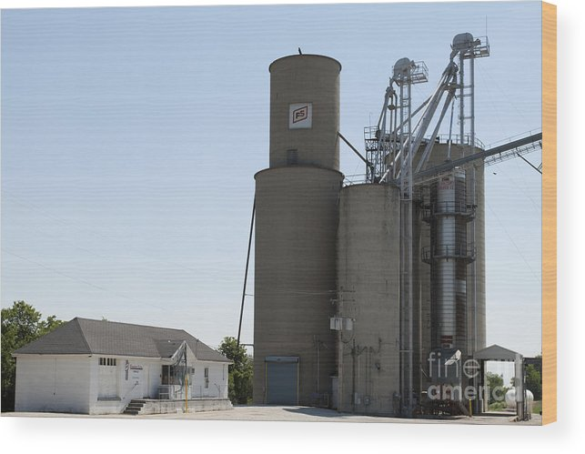 Grain Bin Wood Print featuring the photograph Grain Processing Facility In Shirley Illinois 3 by Alan Look