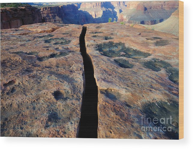 Grand Canyon Wood Print featuring the photograph Grand Canyon Dividing Line by Bob Christopher