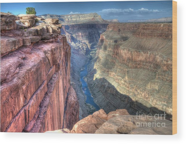 Grand Canyon Wood Print featuring the photograph Grand Canyon Toroweap Vista by Bob Christopher