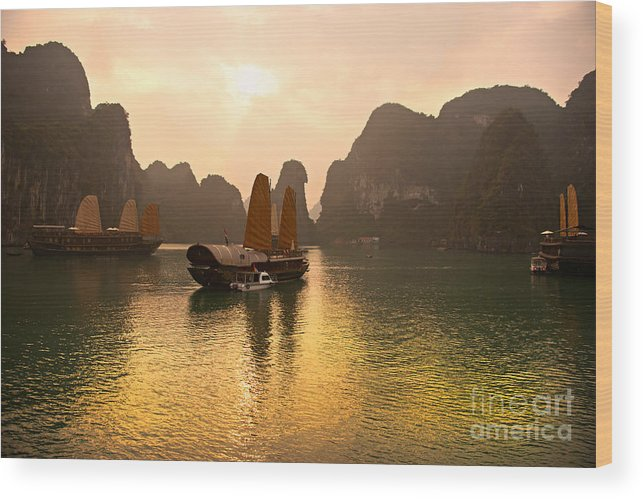 Halong Bay Wood Print featuring the photograph Halong Bay - Vietnam by Luciano Mortula