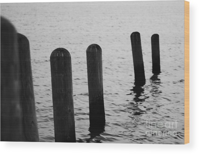 Pamlico Sound Wood Print featuring the photograph Harbor Ties by Tony Cooper