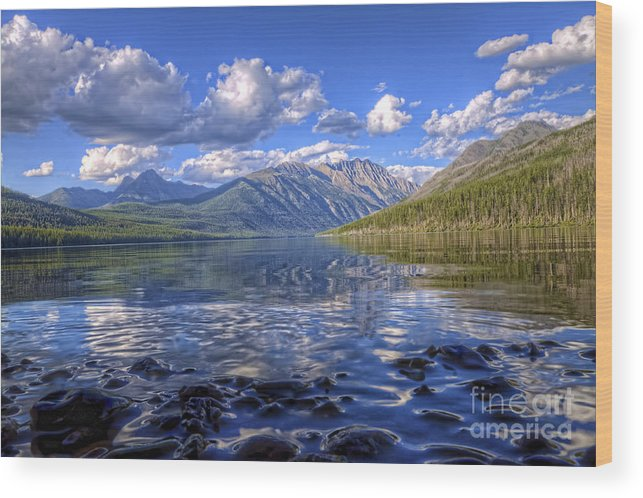 Landscape Wood Print featuring the photograph Kintla Lake Pebbles by Scotts Scapes