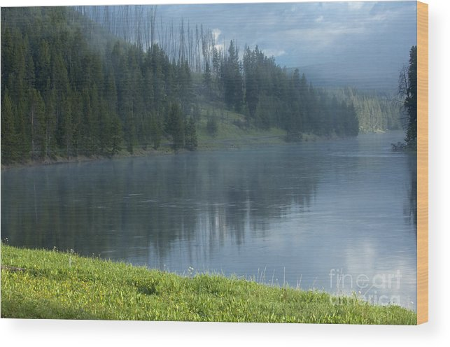 Bronstein Wood Print featuring the photograph Lifting Fog On The Yellowstone by Sandra Bronstein