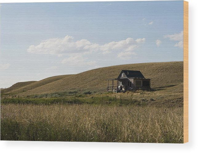 Farmhouse Wood Print featuring the photograph Little House On The Plains by Lorraine Devon Wilke
