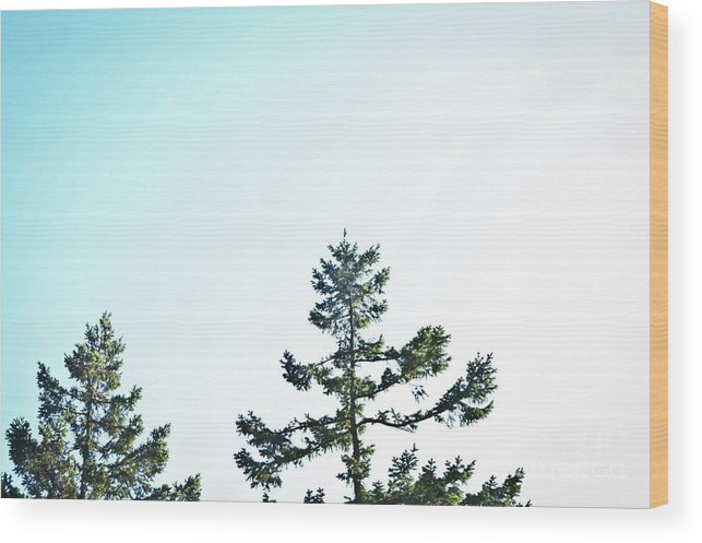 Landscape Wood Print featuring the photograph Looking On by Christine Redmond