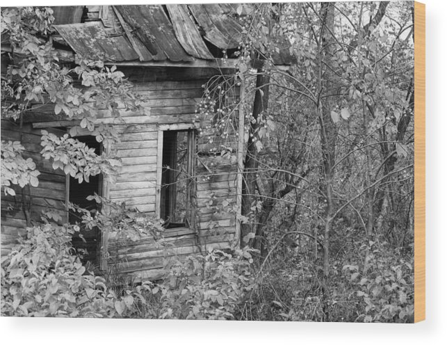 Rural Decay Wood Print featuring the photograph Looking Out by Robert Turek