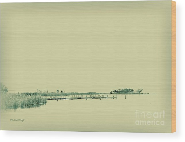 Currituck Bay Wood Print featuring the photograph Marsh Rev3 by Paulette B Wright