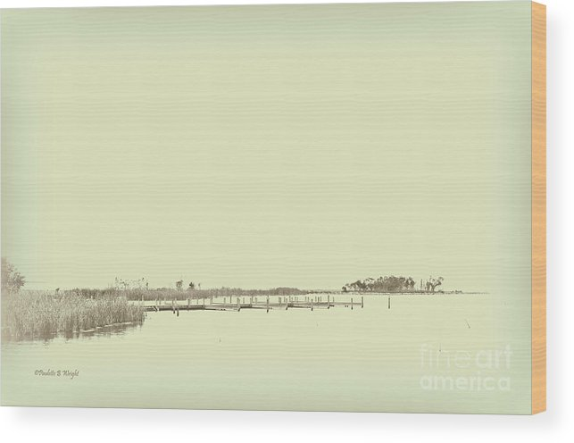 Currituck Bay Wood Print featuring the photograph Marsh Rev5 by Paulette B Wright