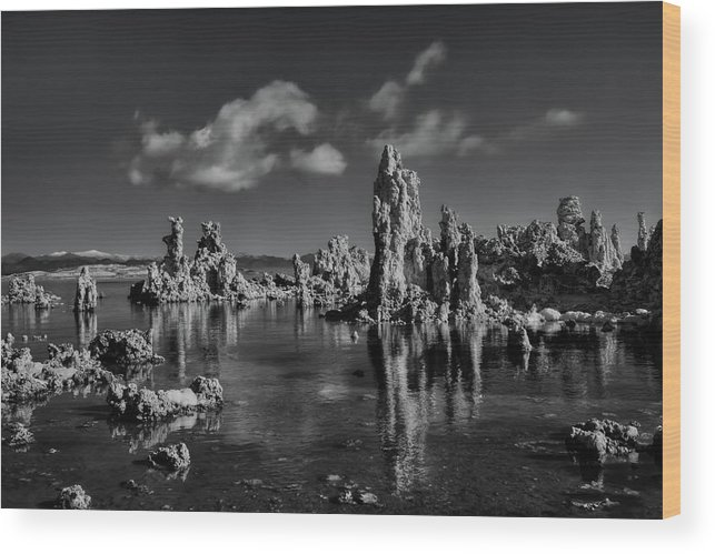 Black And Whilte Wood Print featuring the photograph Mono Lake by Beth Sargent