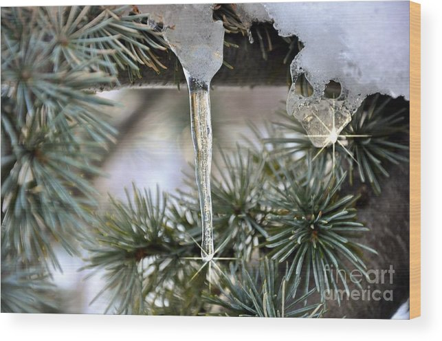 Snow Wood Print featuring the digital art Morning Ice by Digital Designs By Dee