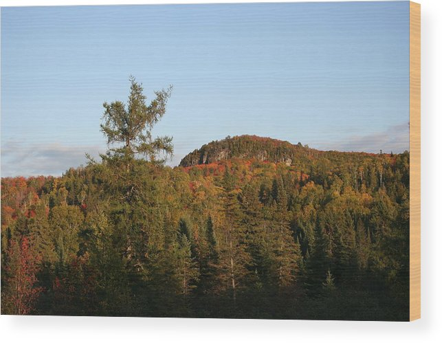 Wood Print featuring the photograph Mount Rockwood by Joi Electa