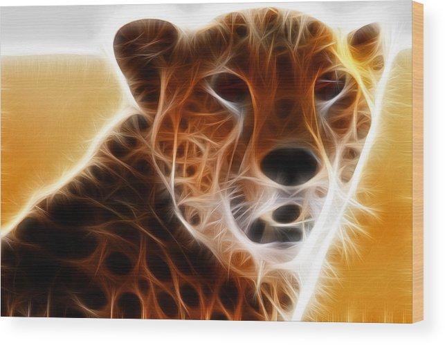 Cheeta Wood Print featuring the photograph Neon Cheeta by Arthur Elster