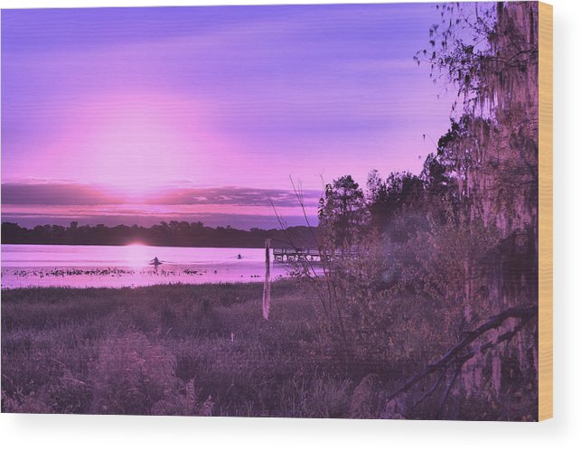 Pink Wood Print featuring the photograph Oh by Mike Wilber