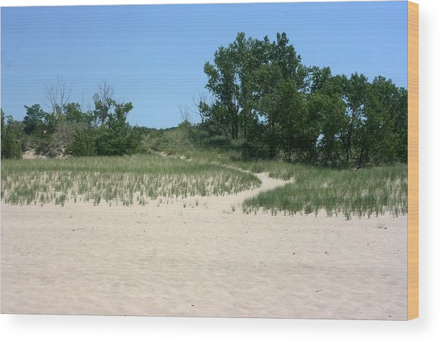 Beach Wood Print featuring the photograph Pathway From Beach by Vincent Duis