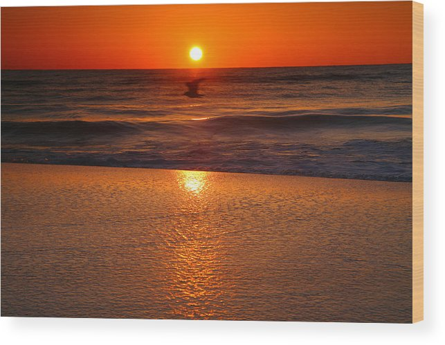 Sunrise Wood Print featuring the photograph Red Dawn by Steven Ainsworth