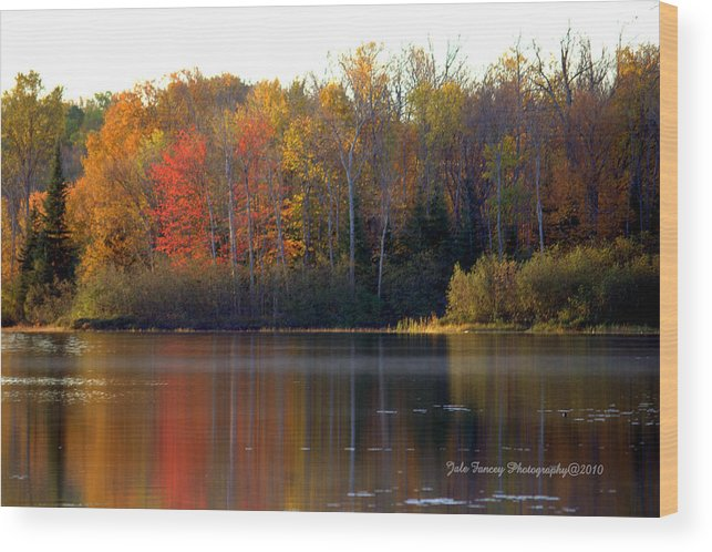 Photography Wood Print featuring the photograph Reflections Of Fall by Jale Fancey