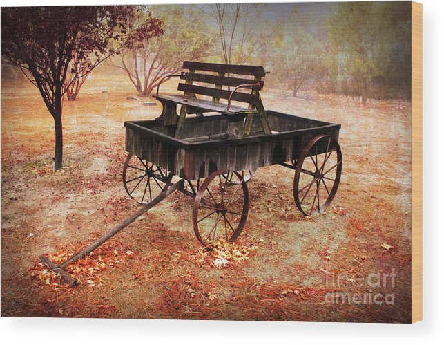 Rustic Wood Print featuring the photograph Retired Wagon 2 by Leslie Kinney