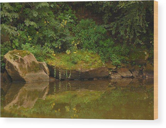 Rocks Wood Print featuring the photograph Rockin Flora by Juanita L Ruffner