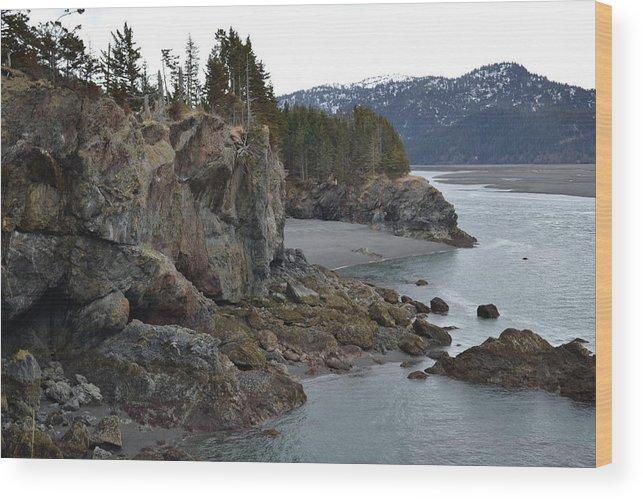 Shore Wood Print featuring the photograph Rocky Shore by Jennifer Zirpoli