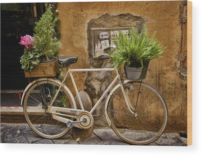Bike Wood Print featuring the photograph Roman Delivery by Nancy Morgantini