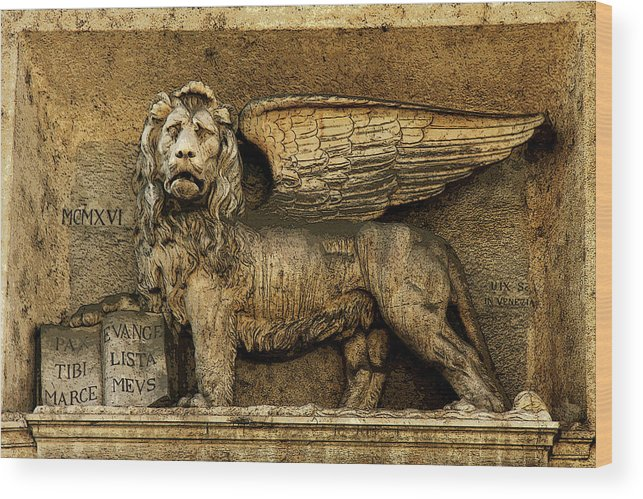 Architecture Wood Print featuring the photograph Rome Leo by Joanne Riske