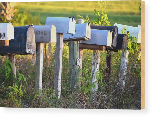 Mail Wood Print featuring the photograph Rural Mail Boxes In Color by Ronald T Williams