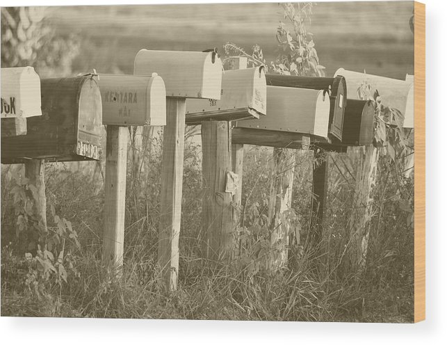 Mail Wood Print featuring the photograph Rural Mail Boxes In Sepia by Ronald T Williams