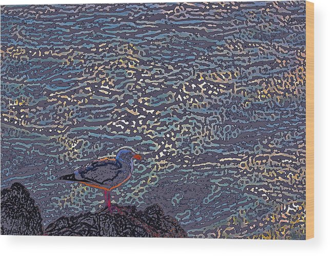 Abstract Wood Print featuring the photograph Seagull by Pamela Cooper