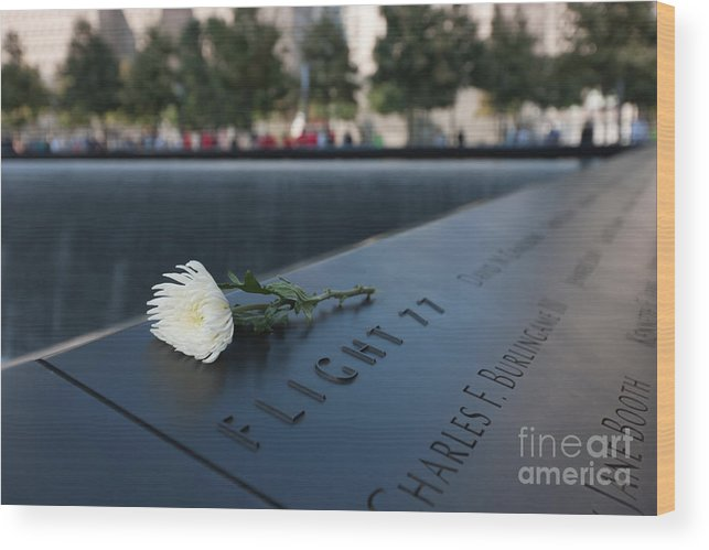 Clarence Holmes Wood Print featuring the photograph September 11 Memorial Flower by Clarence Holmes
