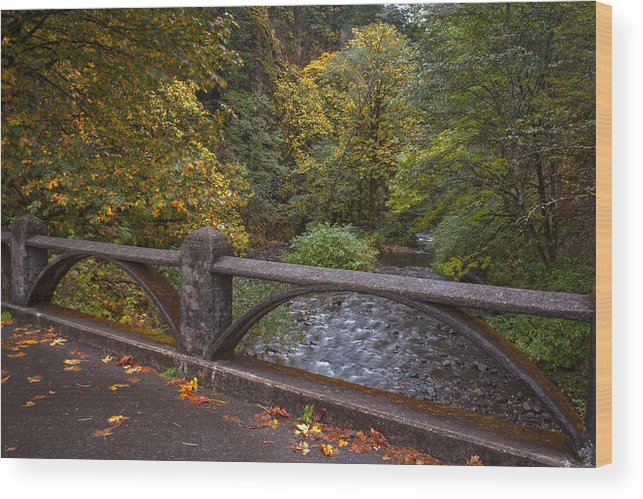 Creek Wood Print featuring the photograph Sheppards Glen Colors by Mike Reid