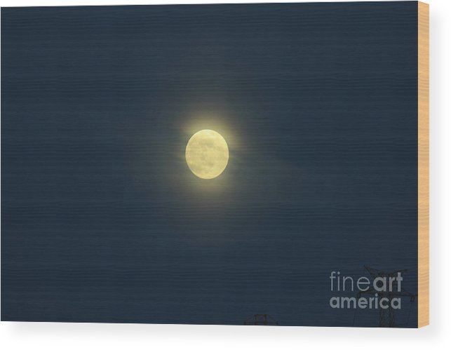 Shy Wood Print featuring the photograph Shy Moon by Alexandra Bento