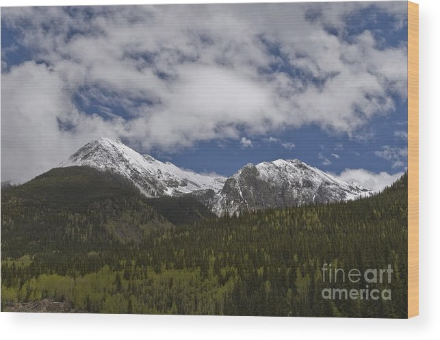 Silverton Wood Print featuring the photograph Snow Capped San Juans by Tim Mulina