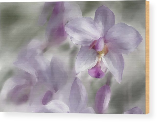 Flower Wood Print featuring the digital art Soft Pink by Diane Dugas