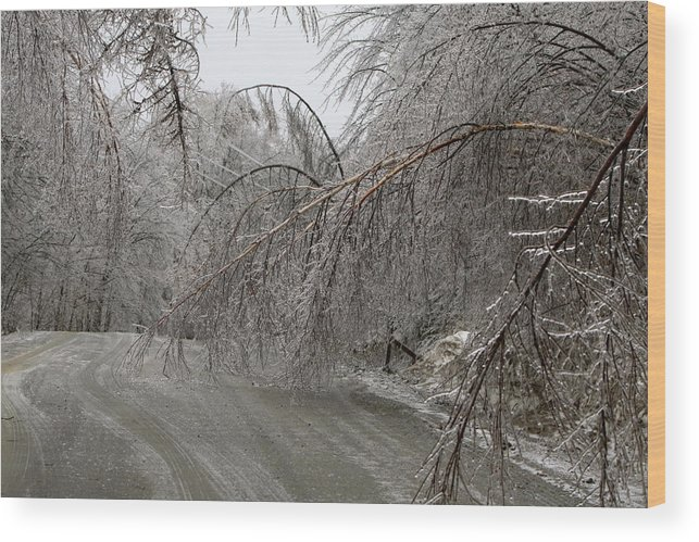 Ice Wood Print featuring the photograph Spring Ice Storm by Gord Patterson