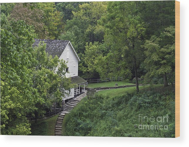 Kentucky Wood Print featuring the photograph Steps To The Mill by Ken Frischkorn
