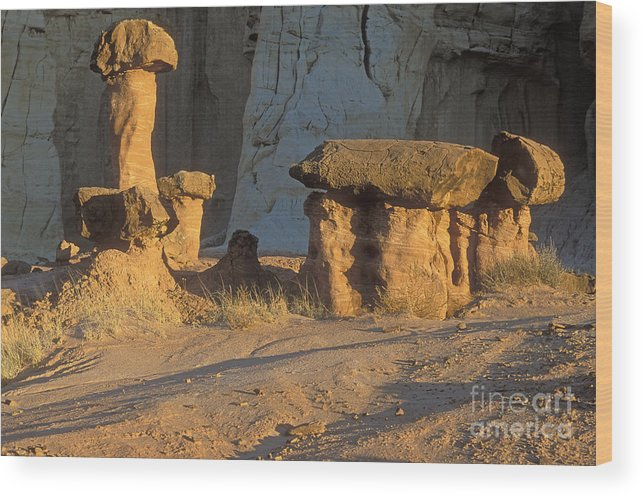 Sandra Bronstein Wood Print featuring the photograph Sunset In Paria Canyon Wilderness by Sandra Bronstein
