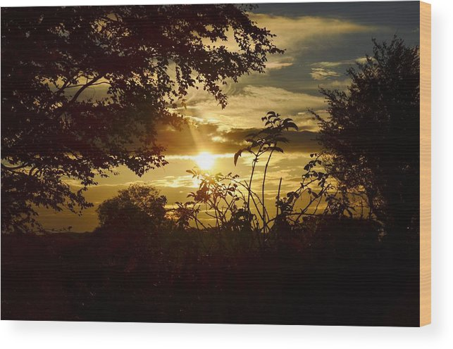 Landscape Wood Print featuring the photograph Sunset by Marcela Doherty